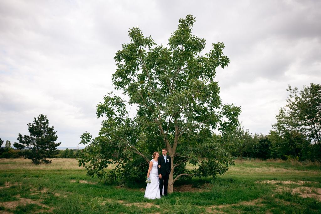 svatební pár u stromu